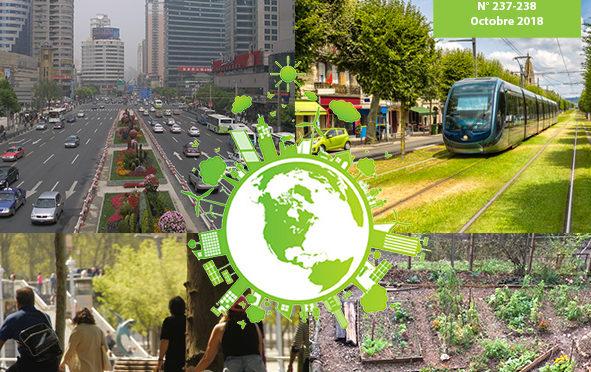 Agriculture urbaine comme levier d'émancipation des femmes et de bien-être en ville
